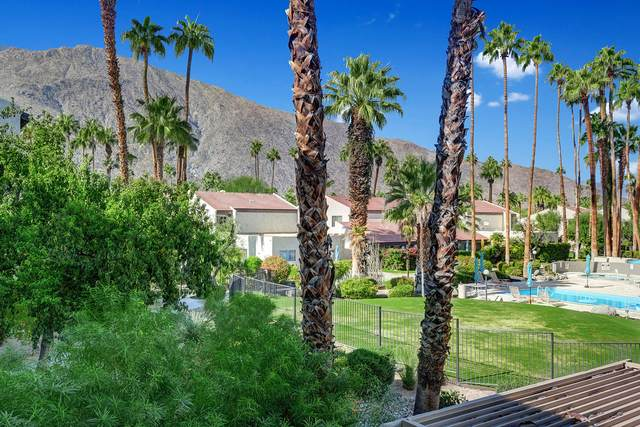 1552 S Camino Real, Palm Springs, CA 92264 (MLS #219053177) :: Mark Wise | Bennion Deville Homes