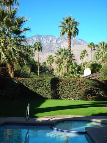 3197 E San Martin Circle, Palm Springs, CA 92264 (MLS #219053258) :: The Jelmberg Team