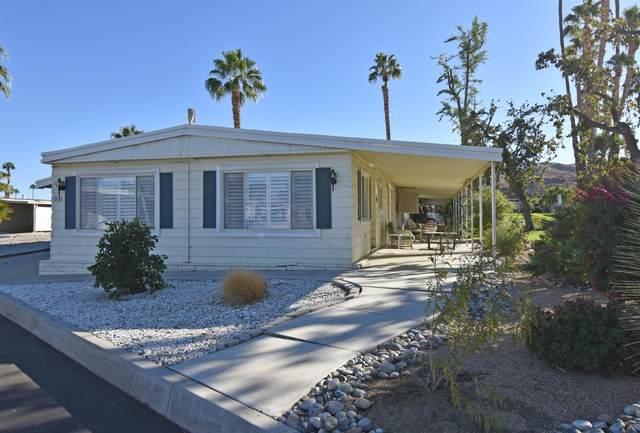 81 Desert Rose Drive, Palm Springs, CA 92264 (MLS #219053357) :: The Jelmberg Team