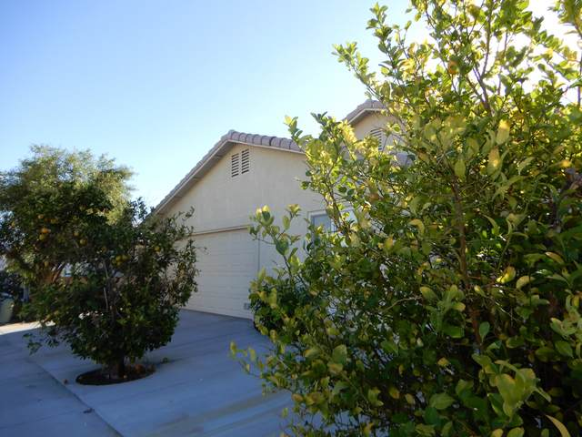 73821 Elizabeth Drive, Thousand Palms, CA 92276 (MLS #219053402) :: The Jelmberg Team