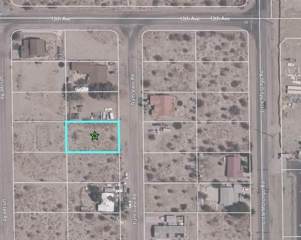 0 Tram View Road, Desert Hot Springs, CA 92240 (MLS #219054068) :: The Jelmberg Team