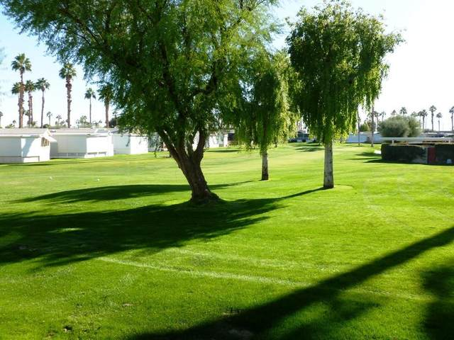 84136 Ave 44, #349 #349, Indio, CA 92203 (MLS #219054434) :: The Sandi Phillips Team