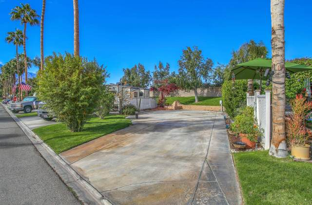 69411 Ramon Road #577, Cathedral City, CA 92234 (MLS #219054784) :: The Sandi Phillips Team