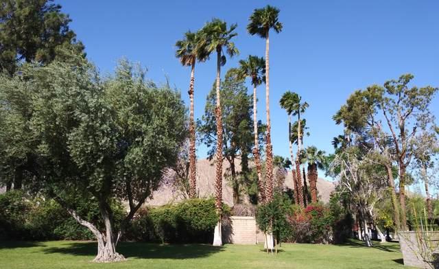 701 N Los Felices Circle, Palm Springs, CA 92262 (MLS #219055001) :: KUD Properties