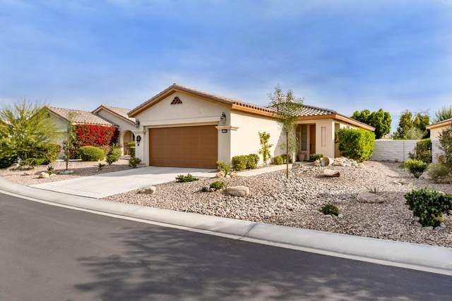 41480 Via Arleta, Indio, CA 92203 (MLS #219055525) :: Brad Schmett Real Estate Group