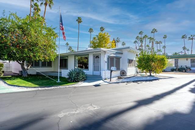 182 Oasis, Palm Springs, CA 92264 (MLS #219055549) :: Hacienda Agency Inc
