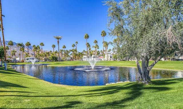 69411 Ramon Road #973, Cathedral City, CA 92234 (MLS #219055556) :: The John Jay Group - Bennion Deville Homes