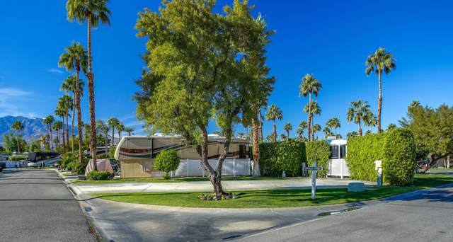 69411 Ramon Road #359, Cathedral City, CA 92234 (MLS #219055559) :: The John Jay Group - Bennion Deville Homes