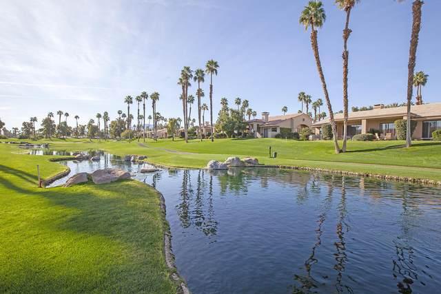 38560 Lobelia Circle, Palm Desert, CA 92211 (MLS #219055612) :: Hacienda Agency Inc