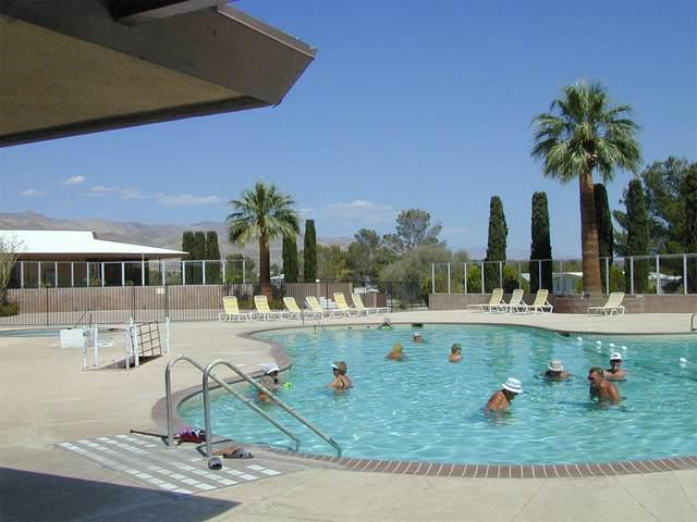 16531 Vista Cerro, Desert Hot Springs, CA 92241 (MLS #219055866) :: Mark Wise | Bennion Deville Homes