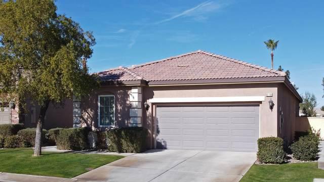 82780 Burnette Drive, Indio, CA 92201 (MLS #219055890) :: The Sandi Phillips Team