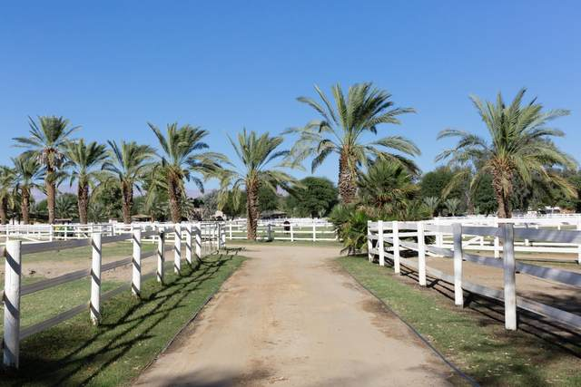 61737 Golden Lupine Court, Thermal, CA 92274 (MLS #219055927) :: Hacienda Agency Inc