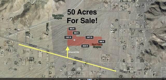 0 Norman/Terry/Driscoll Rd, Sky Valley, CA 92241 (MLS #219055958) :: Brad Schmett Real Estate Group
