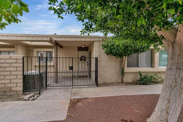 82024 Odlum Drive, Indio, CA 92201 (MLS #219056386) :: Brad Schmett Real Estate Group
