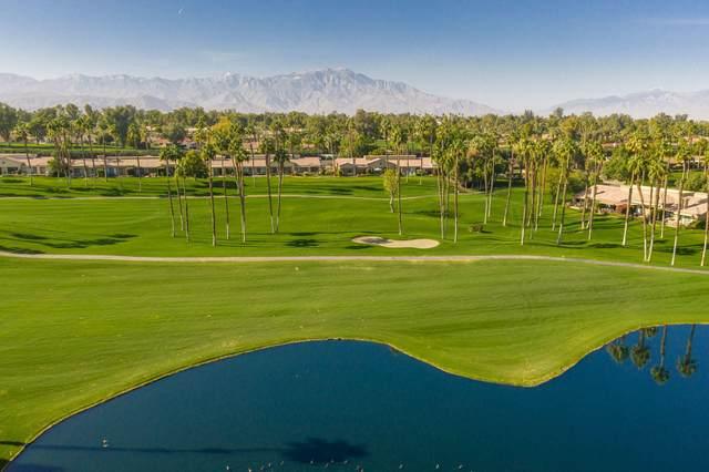 39330 Narcissus Way, Palm Desert, CA 92211 (MLS #219057335) :: Brad Schmett Real Estate Group