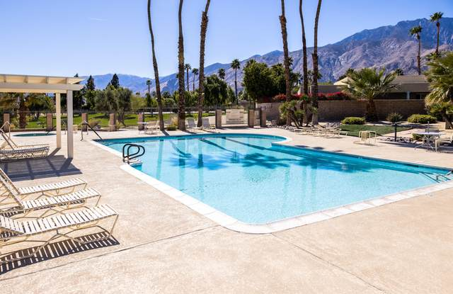 1486 Sunflower Circle, Palm Springs, CA 92262 (MLS #219057811) :: The Jelmberg Team