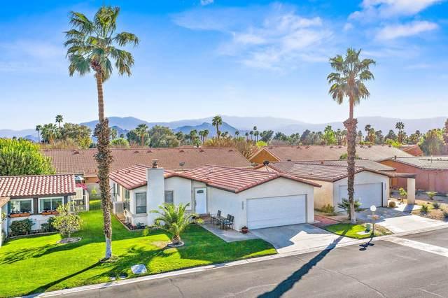 77949 Calypso Road, Palm Desert, CA 92211 (MLS #219058002) :: Brad Schmett Real Estate Group