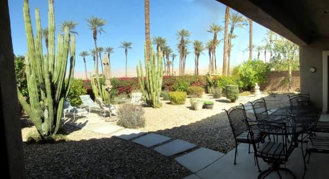 78062 Vinewood Drive, Palm Desert, CA 92211 (MLS #219058012) :: Brad Schmett Real Estate Group