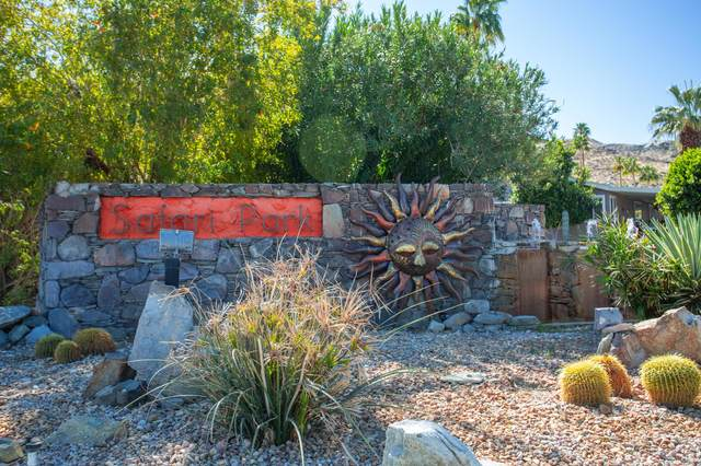 60 Safari Park Drive, Palm Springs, CA 92264 (MLS #219058027) :: The Jelmberg Team