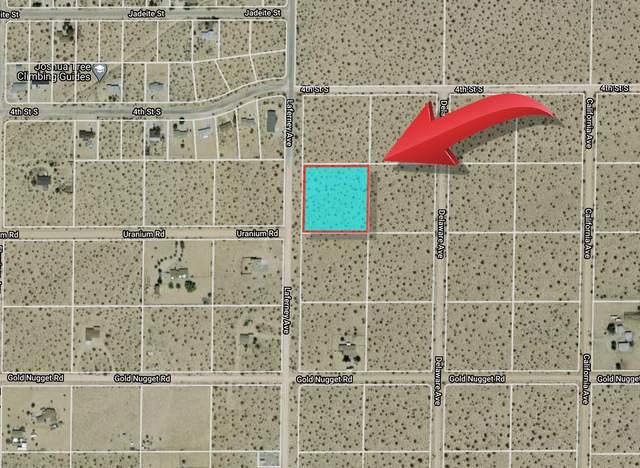 5353 La Ferney Avenue, Joshua Tree, CA 92252 (#219058572) :: The Pratt Group