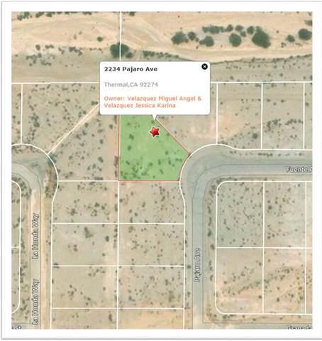2234 Pajaro Avenue, Salton City, CA 92275 (MLS #219059213) :: The Jelmberg Team