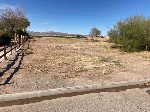 11408 Desert Trailways Lane, Blythe, CA 92225 (MLS #219059379) :: The Jelmberg Team