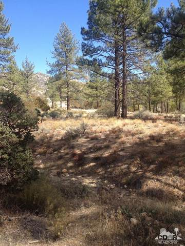 0 Table Mountain Rd. -Lot 20, Mountain Center, CA 92561 (MLS #219059672) :: The Jelmberg Team