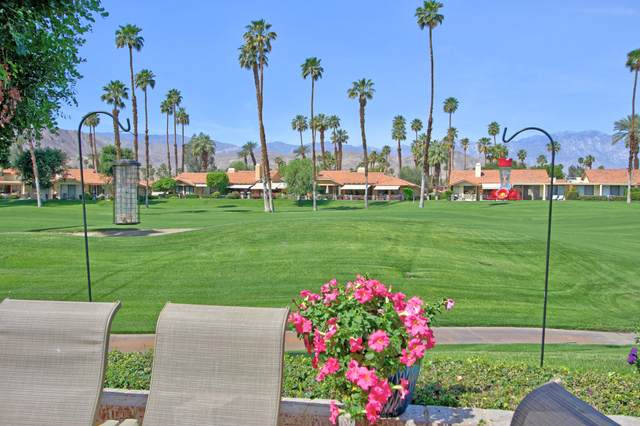 379 Gran Via, Palm Desert, CA 92260 (MLS #219060141) :: Mark Wise | Bennion Deville Homes