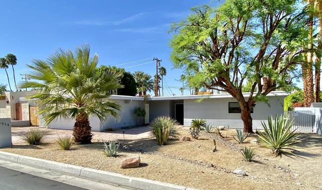 74614 Yucca Tree Drive, Palm Desert, CA 92260 (MLS #219060204) :: Mark Wise | Bennion Deville Homes