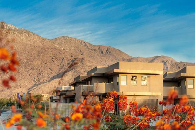201 S Hermosa Drive, Palm Springs, CA 92262 (MLS #219060231) :: Mark Wise | Bennion Deville Homes