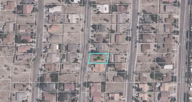0 Avenida Atezeda, Desert Hot Springs, CA 92240 (MLS #219060243) :: The Jelmberg Team