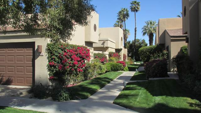 76794 Chrysanthemum Way, Palm Desert, CA 92211 (MLS #219060308) :: The Jelmberg Team