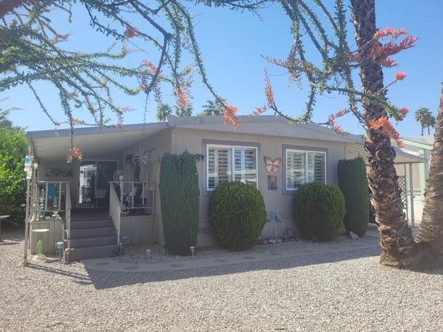 312 Little Deer, Cathedral City, CA 92234 (MLS #219060404) :: Brad Schmett Real Estate Group
