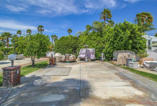 69411 Ramon Road #533, Cathedral City, CA 92234 (#219060499) :: The Pratt Group