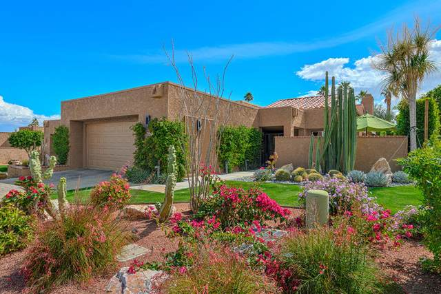 73151 Ajo Lane, Palm Desert, CA 92260 (MLS #219060521) :: Brad Schmett Real Estate Group