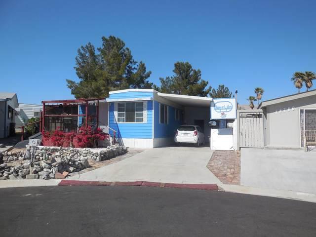 16760 Lakeside Court, Desert Hot Springs, CA 92241 (MLS #219061309) :: Brad Schmett Real Estate Group