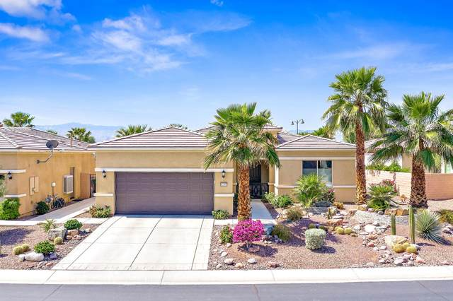 81197 Calle Orfila, Indio, CA 92203 (MLS #219061533) :: The John Jay Group - Bennion Deville Homes