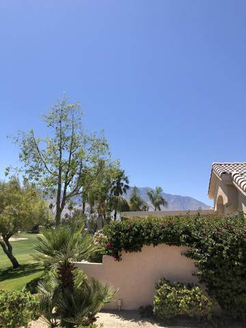 67639 S Natoma, Cathedral City, CA 92234 (#219061570) :: The Pratt Group