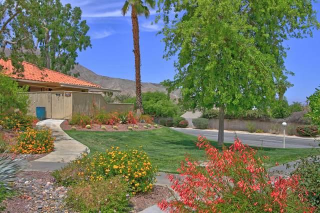 72805 Don Larson Lane, Palm Desert, CA 92260 (MLS #219061630) :: The Jelmberg Team