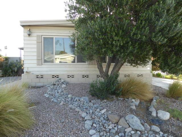 33240 Laura Drive, Thousand Palms, CA 92276 (MLS #219061857) :: Zwemmer Realty Group