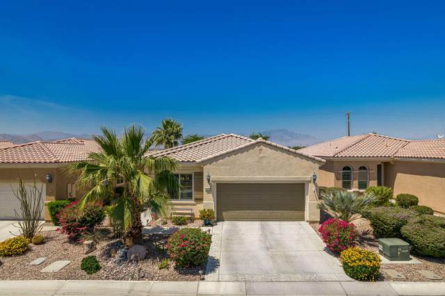 41135 Calle Pampas, Indio, CA 92203 (MLS #219061880) :: Zwemmer Realty Group