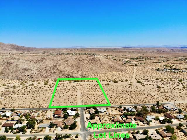 102 Hilltop Drive, Joshua Tree, CA 92252 (MLS #219061892) :: Brad Schmett Real Estate Group