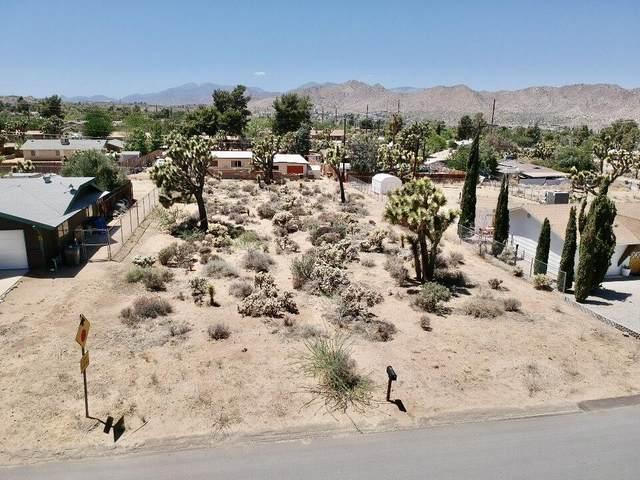 0 Elk Trail, Yucca Valley, CA 92284 (MLS #219061951) :: The Sandi Phillips Team