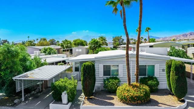 69556 Midpark Drive, Desert Hot Springs, CA 92241 (#219061980) :: The Pratt Group