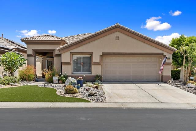 43684 Old Troon Court, Indio, CA 92201 (MLS #219062082) :: The Sandi Phillips Team
