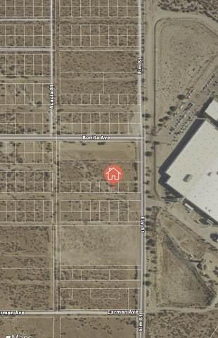 4 Stefan Avenue, Cabazon, CA 92230 (#219062355) :: The Pratt Group