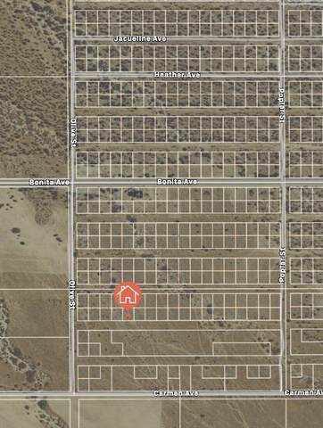 23 Erick Avenue, Cabazon, CA 92230 (#219062360) :: The Pratt Group