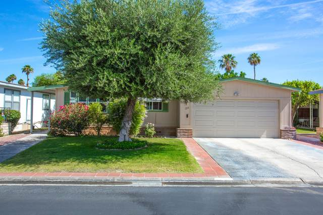 1212 Via Yolo, Cathedral City, CA 92234 (MLS #219062660) :: Mark Wise | Bennion Deville Homes