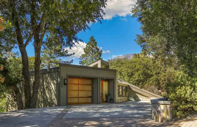 54420 Village View Drive, Idyllwild, CA 92549 (MLS #219062753) :: Hacienda Agency Inc