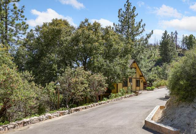 53460 Westridge Road, Idyllwild, CA 92549 (MLS #219062757) :: Hacienda Agency Inc